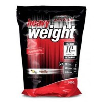 ActivLab – Heavy Weight Professional – 5 кг
